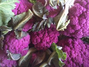 cauliflower-side