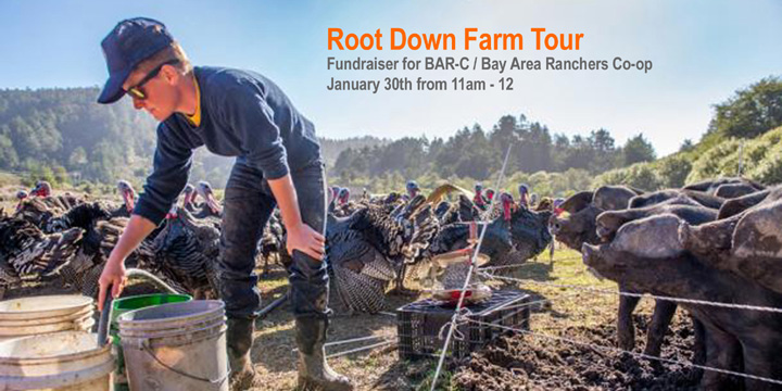 Root-Down-Farm-OFT-banner